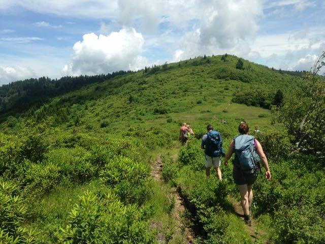 Shining Rock Wilderness, Pisgah National Forest