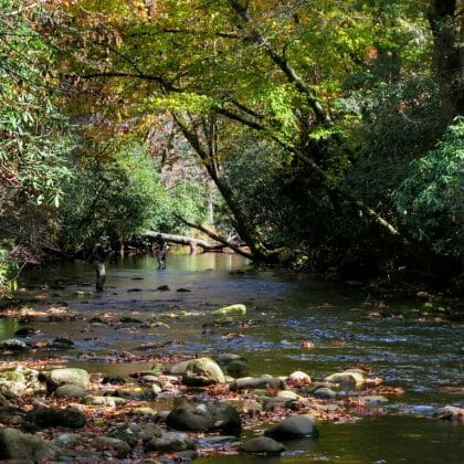 north mills river